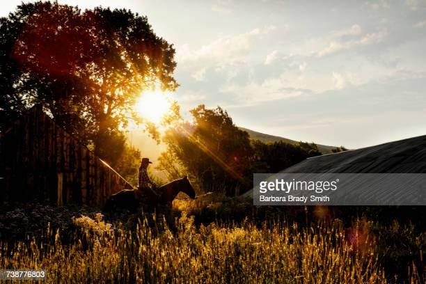 Caucasian woman riding horse near barn at sunset