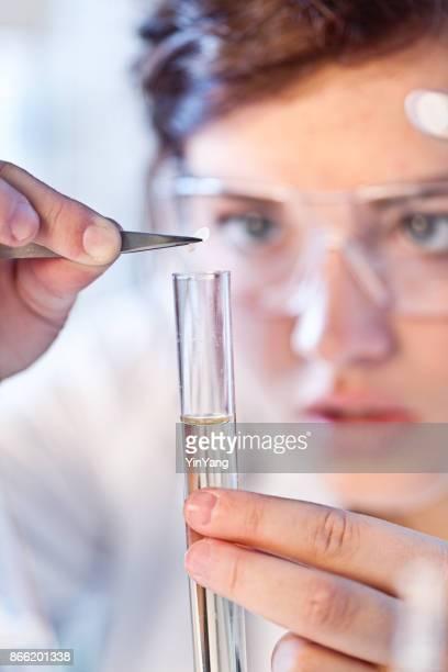 caucasian woman scientist chemist working in a laboratory - bioquímico imagens e fotografias de stock