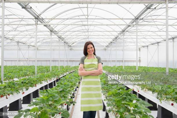 caucasian woman standing in greenhouse - symmetry stock pictures, royalty-free photos & images