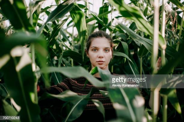 caucasian woman standing in tall corn field - land brandenburg stock-fotos und bilder