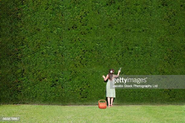Caucasian woman trimming enormous hedge