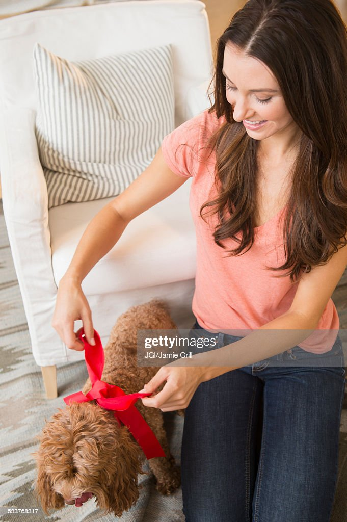 Caucasian woman tying ribbon around pet dog : Foto stock