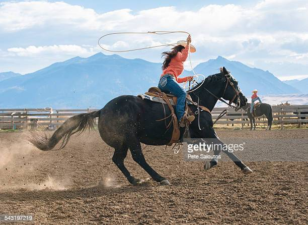 caucasian woman using lasso on horse at rodeo - lasso stockfoto's en -beelden