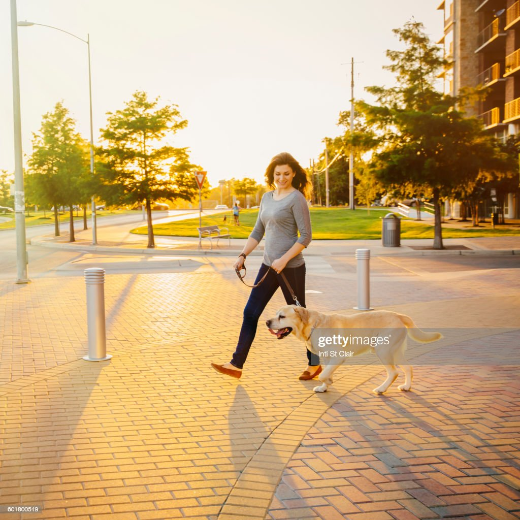 Caucasian woman walking dog on sidewalk : Stock Photo