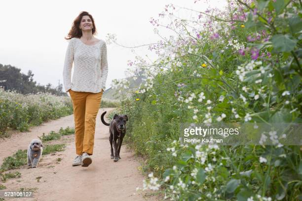 Caucasian woman walking dogs on dirt path