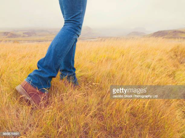 caucasian woman walking in grass field - parte inferior imagens e fotografias de stock