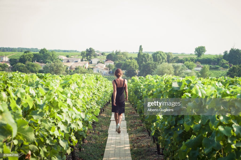Caucasian woman walking on wooden walkway in vineyard : Stock Photo