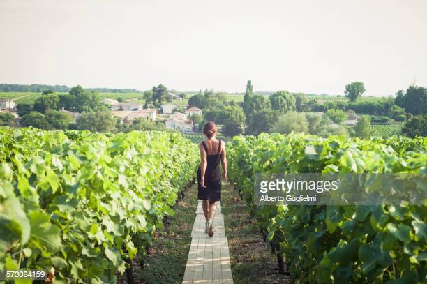 caucasian woman walking on wooden walkway in vineyard - bordeaux wine stock photos and pictures
