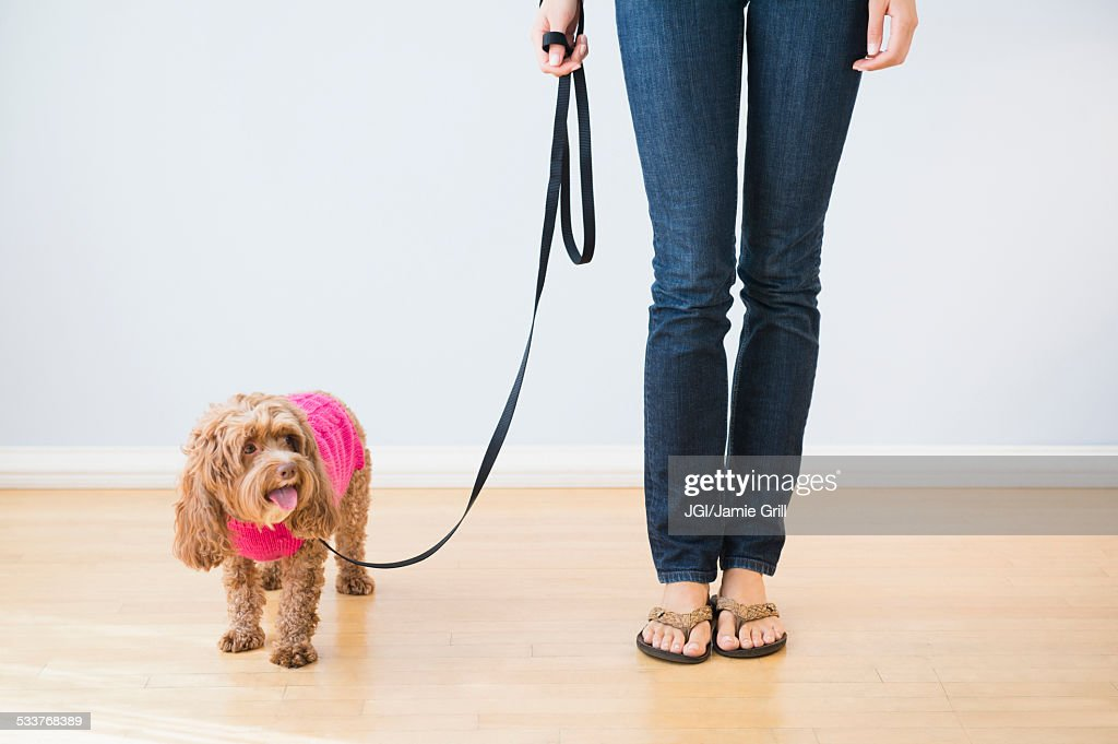Caucasian woman with pet dog on leash : Foto stock