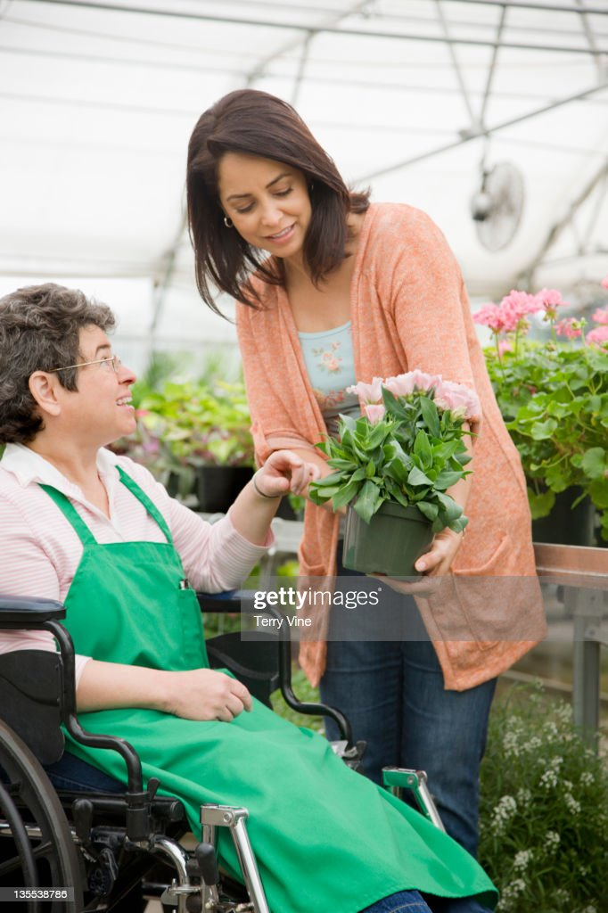 Caucasian worker in wheelchair helping customer in nursery : Stock Photo