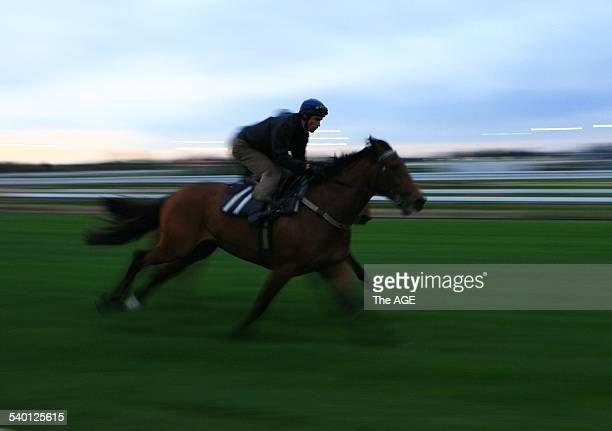 Caulfield Trackwork Jockey Steven Arnold abaord Zipping during this morning's gallops 19 September 2006 The AGE Picture by VINCE CALIGIURI