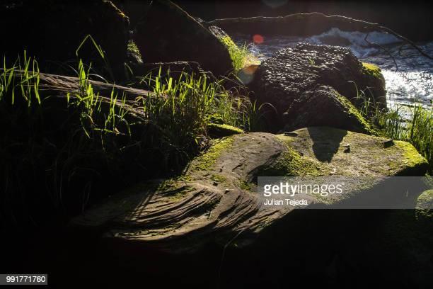 'cause even a rock looks calming - tejeda fotografías e imágenes de stock