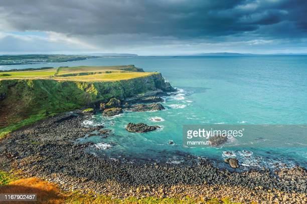 causeway coastline, norther ireland - column stock pictures, royalty-free photos & images