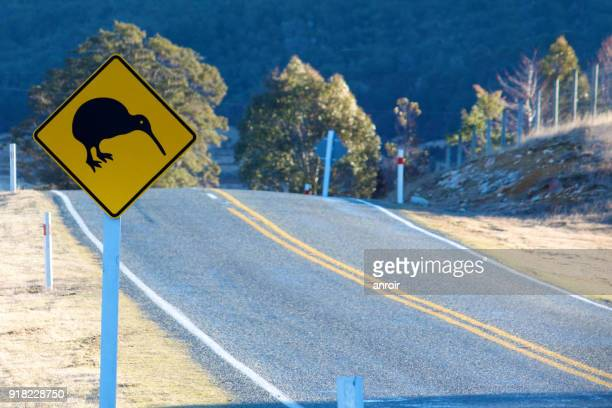 Caution:  Kiwi on the road