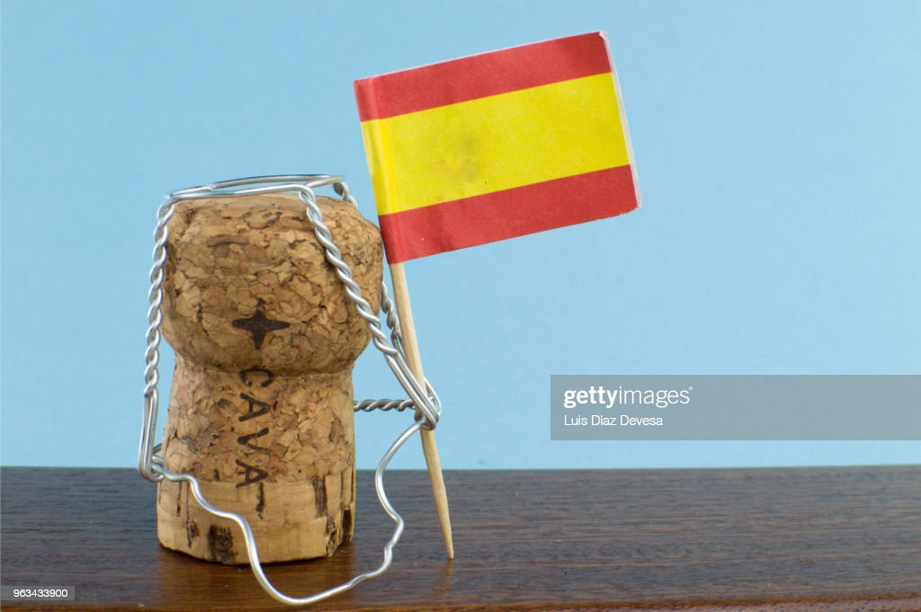 Cava (Spanish wine) : Stock Photo