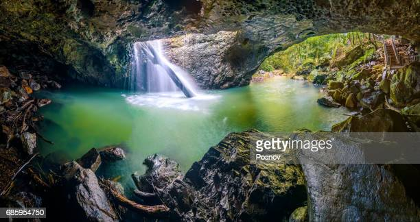 cave creek at springbrook national park, queensland - national park stock photos and pictures