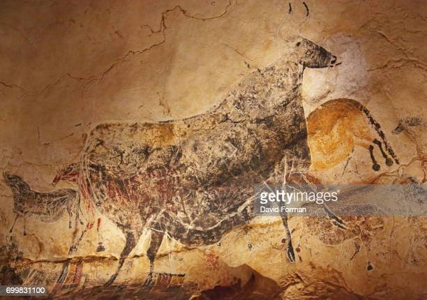 cave painting in lascaux. - lascaux cave stock photos and pictures