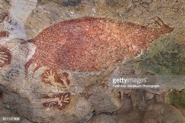 cave painting of sumpang bita cave, pangkep, south sulawesi. - cave painting stock pictures, royalty-free photos & images