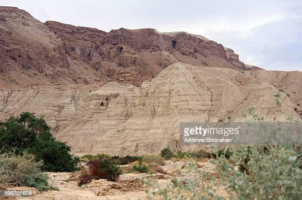 Caves of Qumran