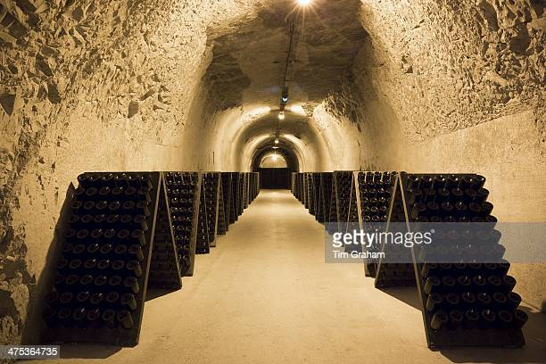 Caves of Taittinger Champagne in Reims ChampagneArdenne France