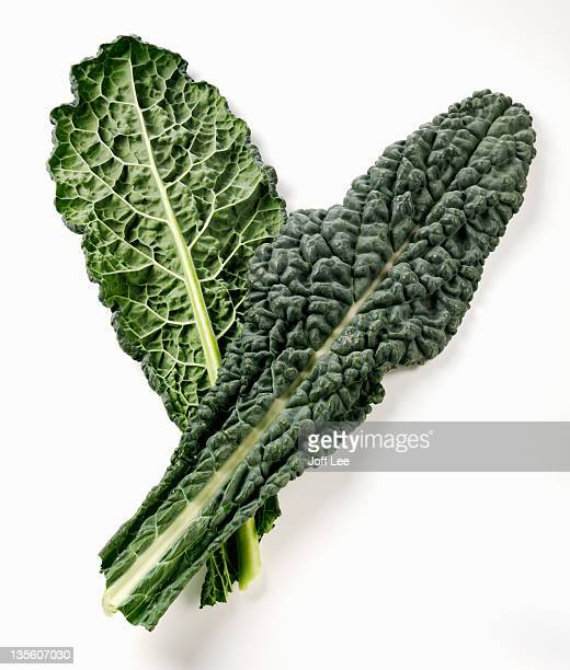 cavolo nero - kale stock photos and pictures