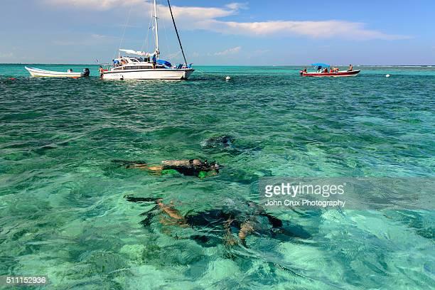 Caye Caulker diving
