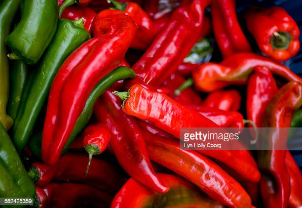 cayenne long peppers - lyn holly coorg stock pictures, royalty-free photos & images