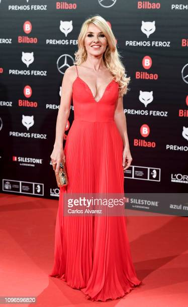 Cayetana Guillén Cuervo attends during Feroz awards red carpet on January 19 2019 in Bilbao Spain
