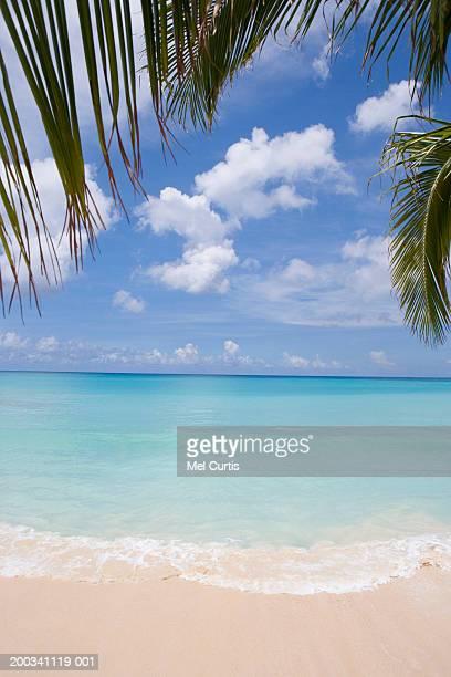 Cayman Islands, Grand Cayman, tropical beach