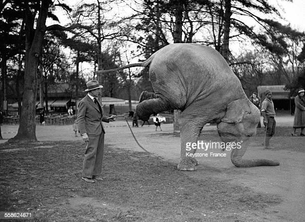 Ce nouvel éléphant du Jardin d'Acclimatation est un acrobate à Paris France en 1932