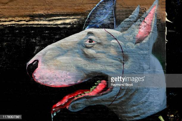 Ceasar u2018Czr Przu2019 Perez' 'Pitbull' mural is displayed in the Englewood neighborhood in Chicago Illinois on September 23 2019 MANDATORY MENTION...