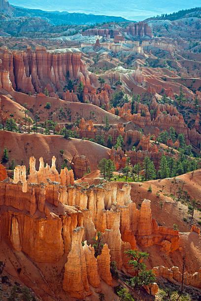 Cedar Breaks National Park II