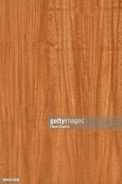 cedar texture filling the frame - cedar tree stock photos and pictures
