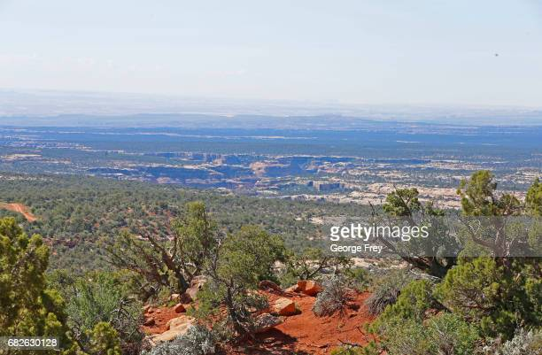 BLANDING UT MAY 12 Cedar trees and deep canyons are shown here in the Bears Ears National Monument on May 12 2017 outside Blanding Utah The newly...