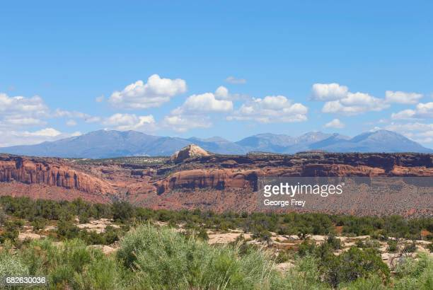 BLANDING UT MAY 12 Cedar trees sandstone formations and mountains are shown here in the Bears Ears National Monument on May 12 2017 outside Blanding...