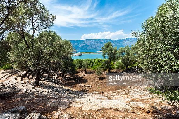 cedrae ancient city - zeder stock-fotos und bilder