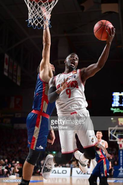 Cedric Jackson of the Illawarra Hawks makes a basket during the round six NBL match between the Adelaide 36ers and the Illawarra Hawks at Titanium...