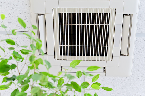 Ceiling air conditioner in modern office or at home with green ficus leaves 1162986730