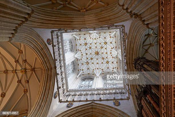 ceiling of york minster cathedral church - york minster stock pictures, royalty-free photos & images