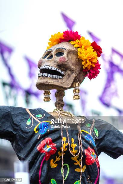 celebrating day of the dead in mexico city - dia de muertos fotografías e imágenes de stock