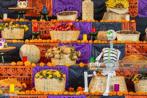 celebrating day of the dead in mexico - day of the dead stock pictures, royalty-free photos & images