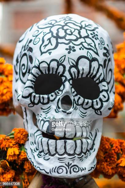 celebrating the day of the day in mexico - sugar skull stock photos and pictures
