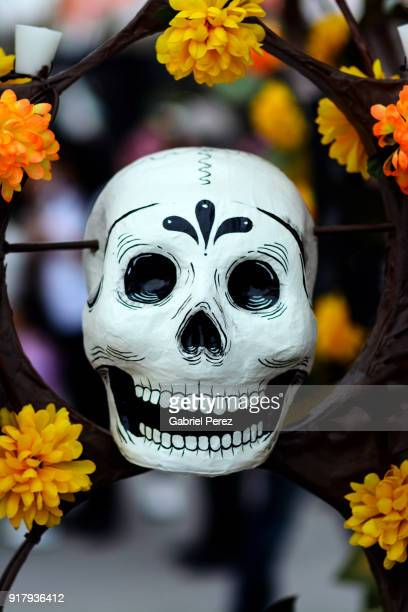 celebrating the day of the dead in mexico city - characteristic of mexico photos et images de collection