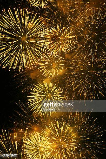 Celebration Fireworks on Night Sky