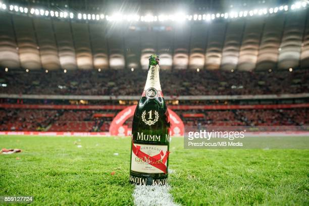 Celebration of the Polish national team after the promotion to the World Championship of Russia 2018 during the FIFA 2018 World Cup Qualifier between...