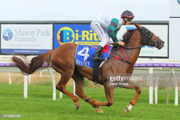 Celebrity Reign ridden by Lewis German wins the Insite Real Estate BM58 Handicap on December 15 2018 in Wangaratta Australia
