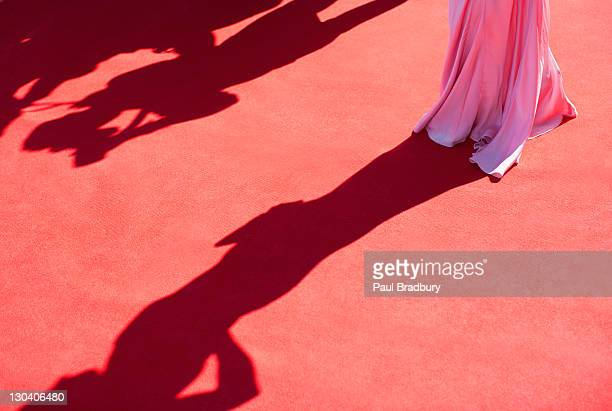 Celebrity standing on red carpet
