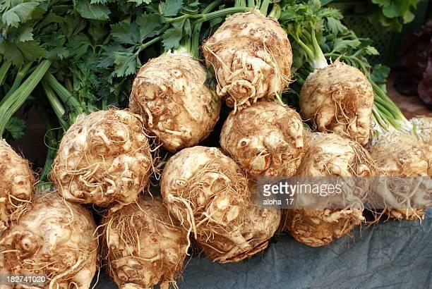 Celeriac (Apium graveolens)