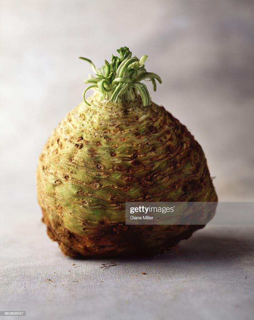 Celeriac, still life : Stock Photo