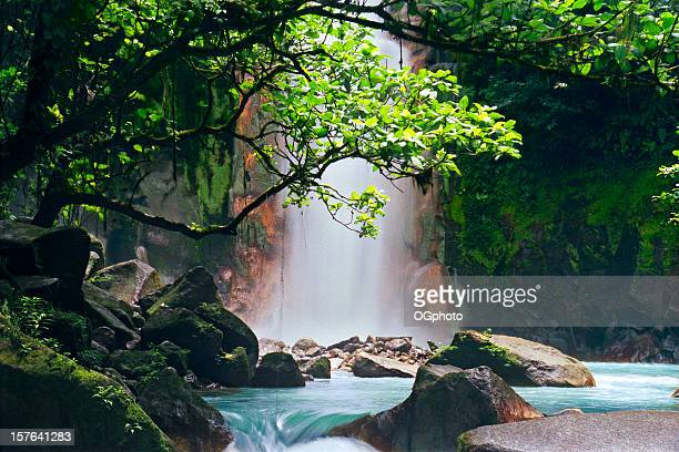 celeste falls, costa rica - costa rica stock photos and pictures